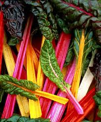 Swiss Chard, I Can't Wait.